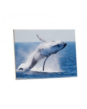 White Sublimation Blank Tiles