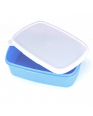 Lunchbox - Plastic - Small - Blue